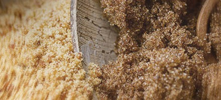 close up of dark brown sugar
